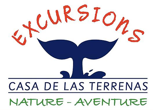 Las Terrenas Excursions
